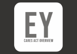 Earnst Young Small Business Resource CARES Act Overview